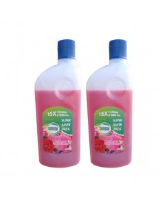 Coinstar Disinfectant Surface Cleaner For Floral for Home and Office 500 ml Pack of 2